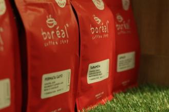 Boréal Coffee Shop/Taramesa © Daisy Larios